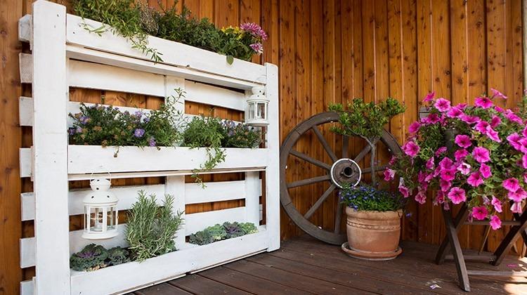 DIY Palette bepflanzen - Gartengeheimnis.at