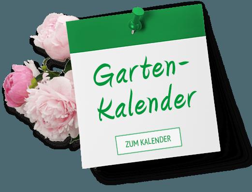 Gartenkalender Frühling
