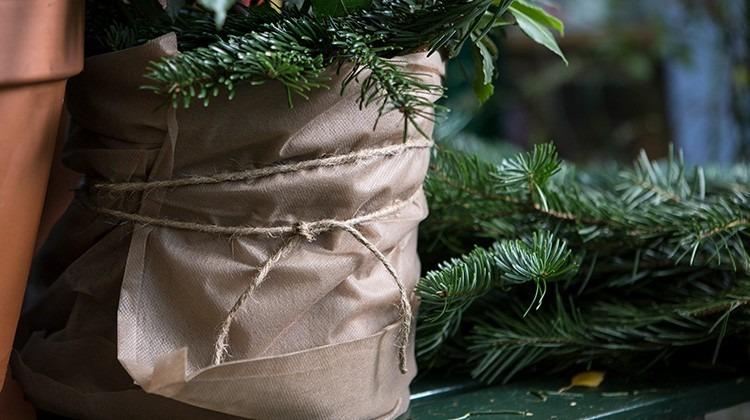 Für den Winter eingepackter Topf