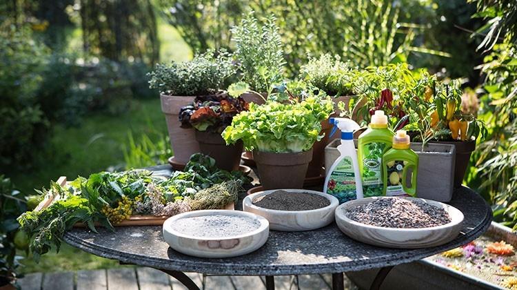 Biologische Dünger und Pflanzen
