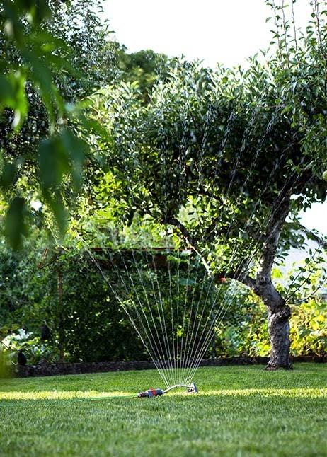 Rasensprenger im Garten