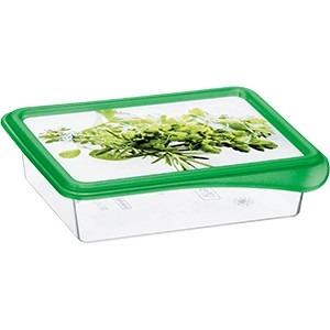 Rotho Gefrierdose mit grünem Deckel