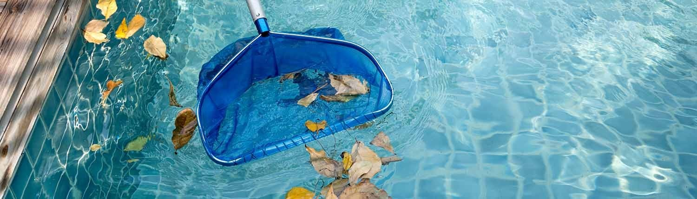 Pool mit einem Kescher reinigen - © GettyImages