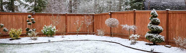 Gartenpflege im Winter © GettyImages