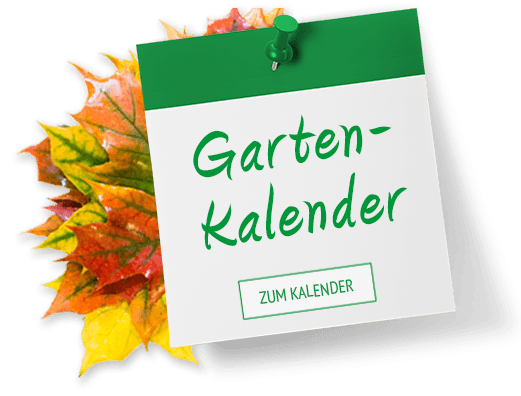 Gartenkalender Herbst