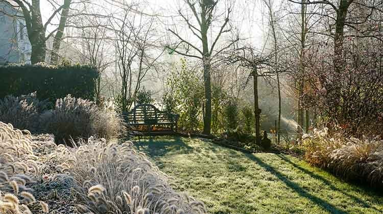 Gartenpflege im Winter © GettyImages