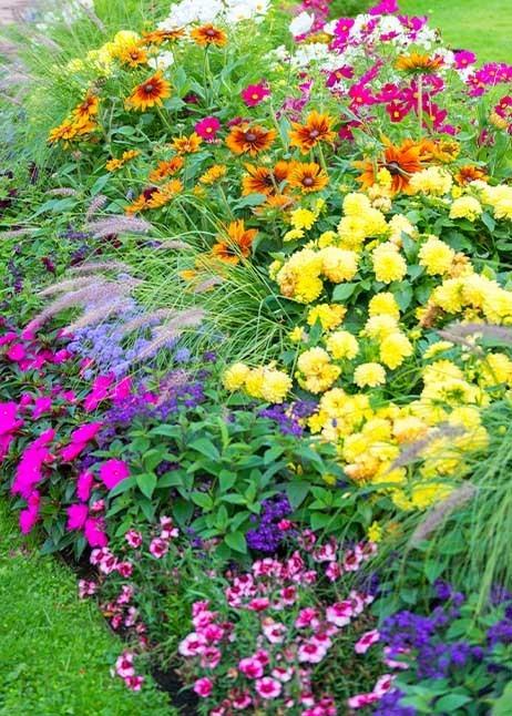 Blumen für Schmetterlinge im Garten © GettyImages