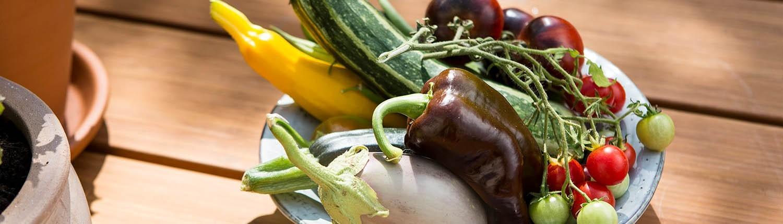 Obst- und Gemüseernte