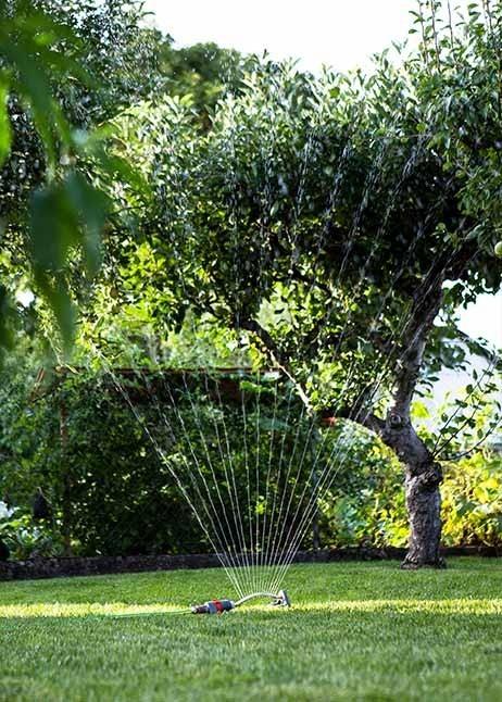 Gießen hilft gegen Trockenschäden im Rasen